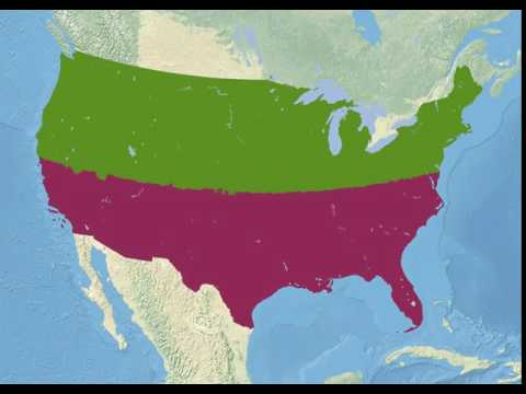 If the US were 2 states of equal population