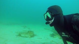 ЧЕРНОЕ МОРЕ 2017. Подводный мир и его обитатели. Подводная съемка. Лучшее утро.