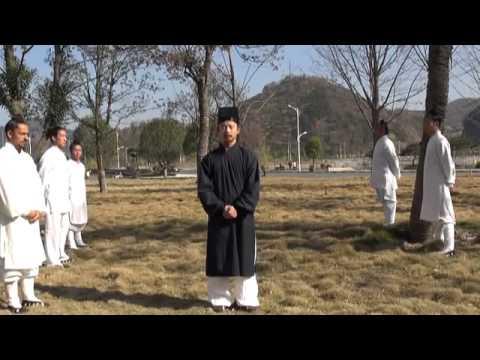 "Wudang Daoist Kungfu Master ChenShiXing Demonstrate "" TaiChi ' Applications !"