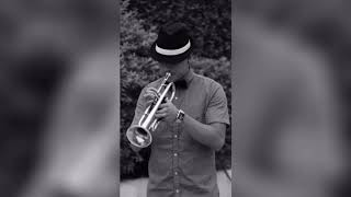 New York New York, trumpet cover Frank Sinatra style