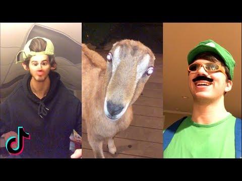Funny TIK TOK Videos Compilation | Ironic Memes & Cringe