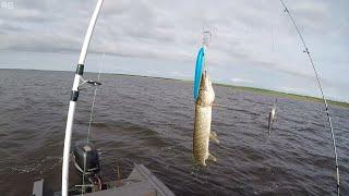 Рыбалка на щуку и окуня 2020. Крайний Север. НАО.