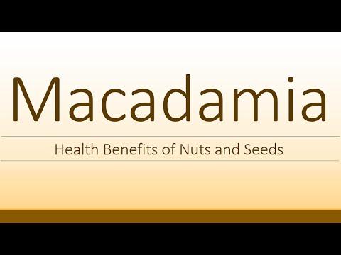 Macadamia Health Benefits Health Benefits of Macadamia Super Seeds and Nuts
