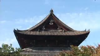 Япония  Золотой глобус