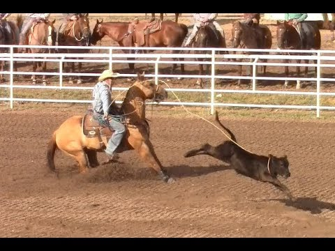 Calf Roping - 1st Go Round Slack - Cheyenne  Rodeo - July 19