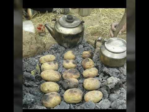 #Warah#Sindhi#hay ray asan ja naseeb .