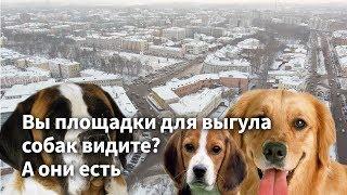 Вы площадки для выгула собак видите? А они есть