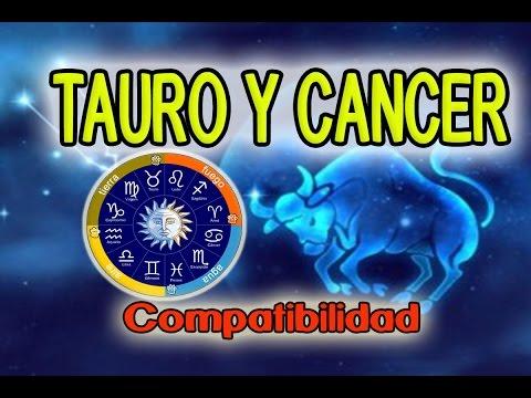 cancer y cancer compatibles en el amor
