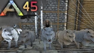 ARK: SURVIVAL EVOLVED E45 - Game of Thrones Wolfpack! How to tame Direwolves! | Docm77 [1080p]