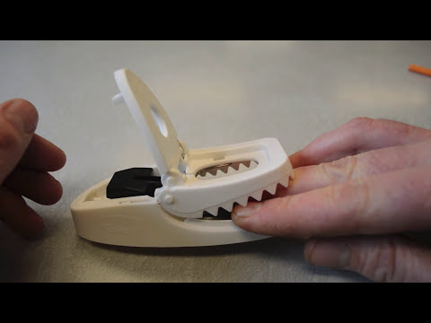 tomcat-press-and-set-mousetrap-in-action-with-motion-cameras.-full-review.-mousetrap-monday