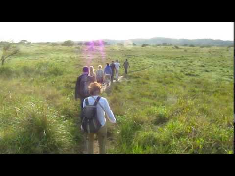 MVI 3453   Natuurwandeling iSimangaliso Wetlands NP