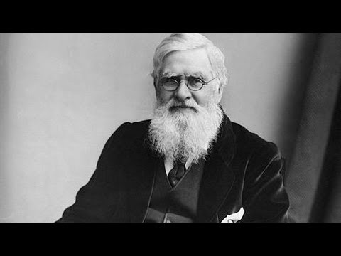 In Charles Darwin's Shadow: The Life and Science of Alfred Russel Wallace (2002)