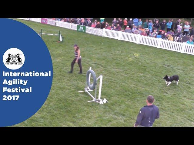 Championship Final - Large | International Agility Festival 2017