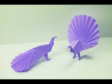 How to make a paper Peacock?