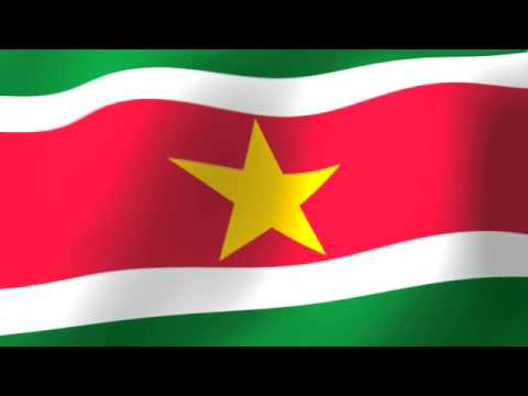Flag of Suriname - Vlag van Suriname