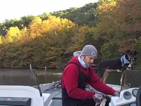 Lake austin bass fishing report and how to find fish bass for Austin bass fishing