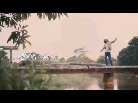 ඔබ මට දීපු හැමදේම | Nadan Man Wenuwen - Amal Prasad | Vini Production