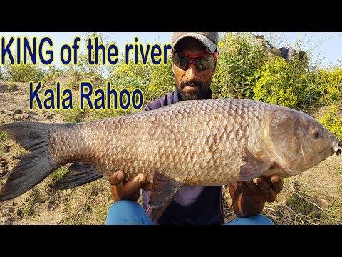 FISHING in PAKISTAN at GANDA SINGH WALA RIVER KASUR 😲😀😲