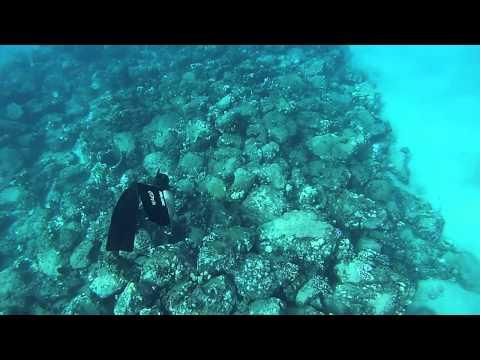Nice little stroll underwater