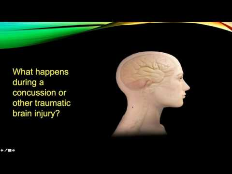Supporting Survivors: Domestic Violence and Traumatic Brain Injury