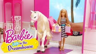 Video Girls Day Out | Barbie LIVE! In the Dreamhouse | Barbie download MP3, 3GP, MP4, WEBM, AVI, FLV Agustus 2017