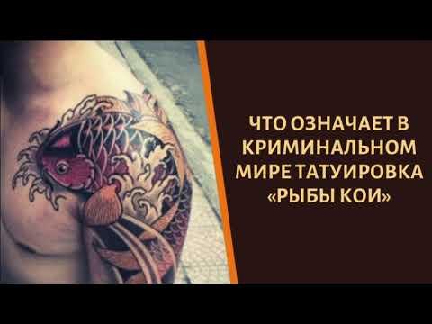 """Что означает авторитетная татуировка """"Рыба Кои""""?"""
