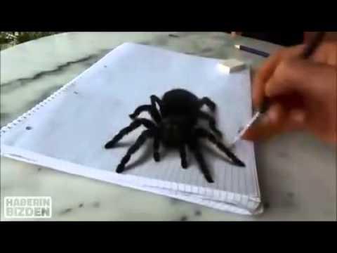 Come disegnare i ragni in 3D