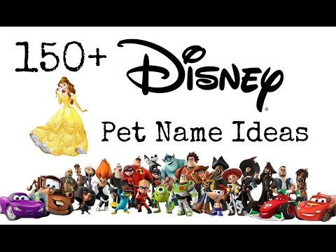150+ Disney Pet Name Ideas
