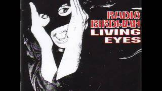 Watch Radio Birdman Iskender Time video