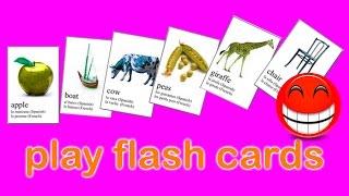 glenn doman - flashcards