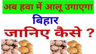 अब हवा में आलू उगाएगा बिहार//Now Bihar will grow potatoes in air//skstw