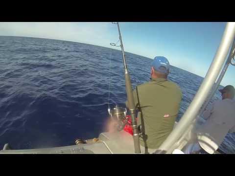 Rainbow Beach Deep Sea Fishing Aboard 'Keely Rose' May 2017