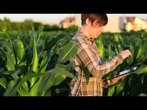 The Future of Agriculture