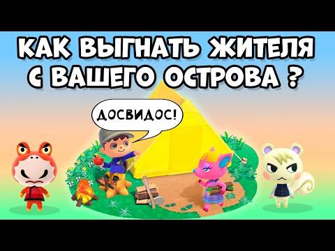 Как выгнать жителя с острова в Animal Crossing: New Horizons (3+)