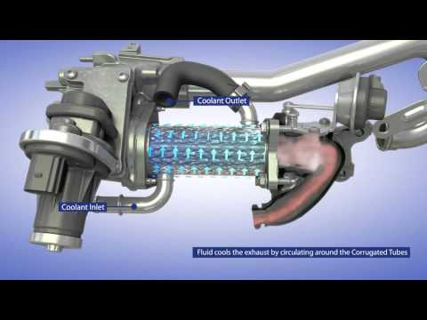 BorgWarner EGR System for Passenger Vehicle Applications