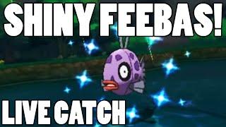 LIVE Shiny Feebas and Shiny Milotic! Shiny Feebas Chain Fishing Catch ORAS