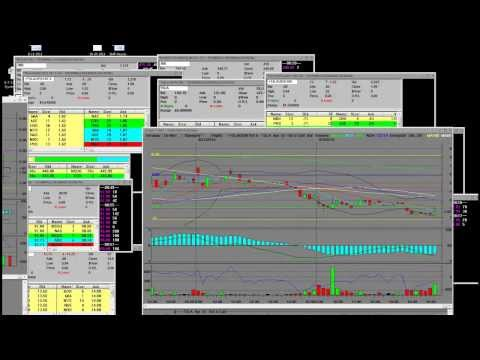 TSLA Special Premarket Weekly Calls Retail vs Market Maker How to Trade Tesla