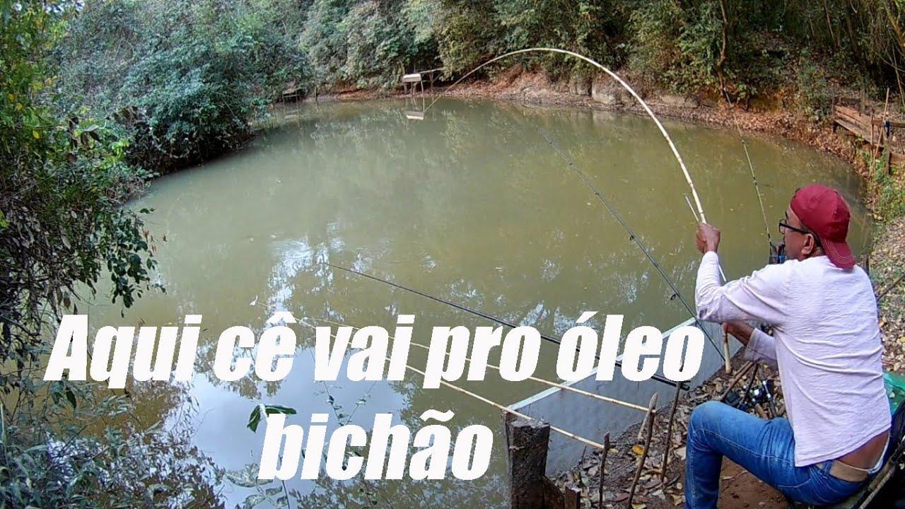 Download PESCARIA DE CURIMBA NO POÇÃO