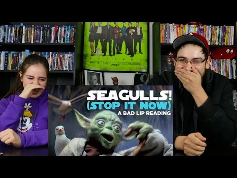 SEAGULLS! (Stop It Now) A Bad Lip Reading REACTION / REVIEW
