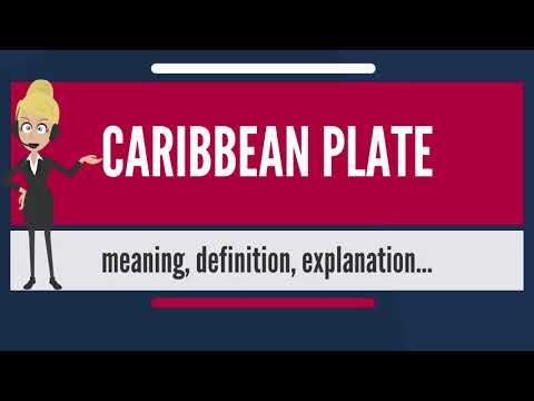What Is CARIBBEAN PLATE? What Does CARRIBEAN PLATE Mean? CARRIBEAN PLATE Meaning & Explanation