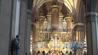 Droga Krzyżowa malowana dźwiękiem. Koncert pasyjny - Katedra Frombork