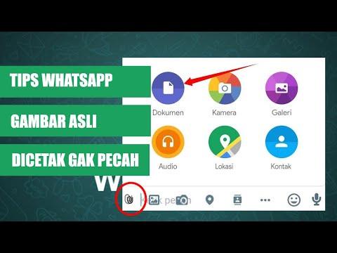 cara-mengirim-gambar/foto-agar-tidak-pecah-di-whatsapp-(ukuran-asli)