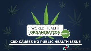 World Health Organization (WHO) Report- CBD causes No Public Health Issue