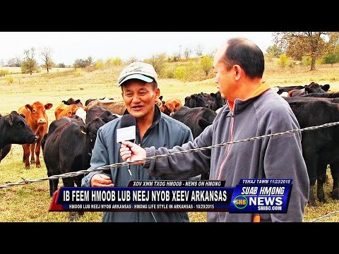 SUAB HMONG NEWS:  Some of Hmong Families Life Style in Arkansas