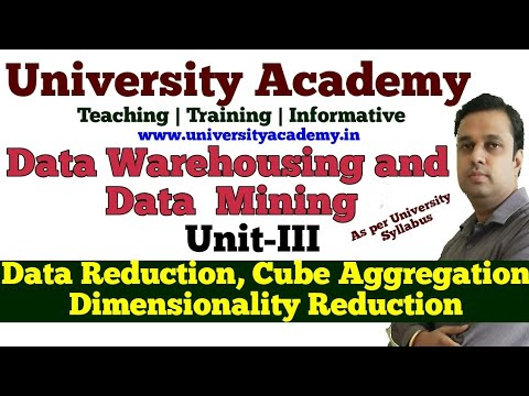 DWM22:Data Reduction In Mining| Data Cube Aggregation| Dimensionality Reduction|hierarchy Gen.