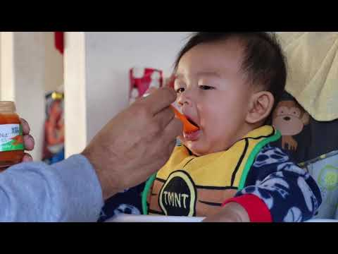 How to Feed Your Baby Sweet Carrots Baby Food (Beech Nut) Video