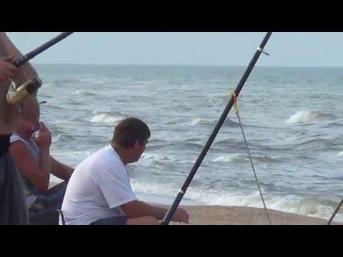 ловля пеленгаса на море