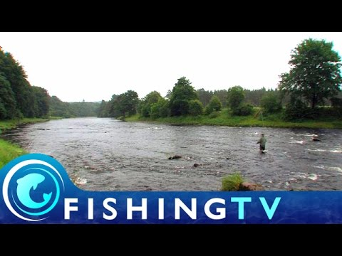 Salmon Fishing On The River Dee - Fishing TV
