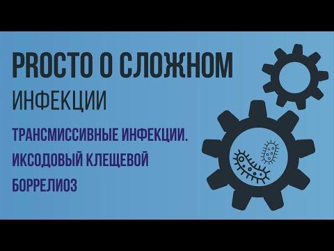 PROСТО О СЛОЖНОМ.Иксодовый клещевой боррелиоз, Инфекционные болезни №5