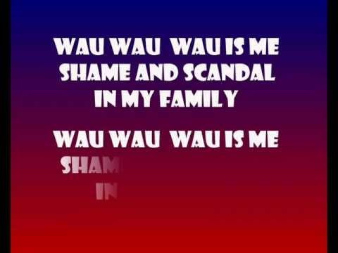 SHAME AND SCANDAL IN MY FAMILY